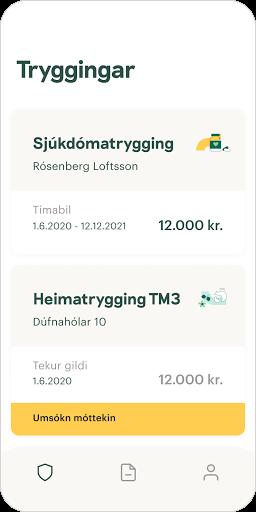 TM - Hugsum í framtíð - screenshot 3