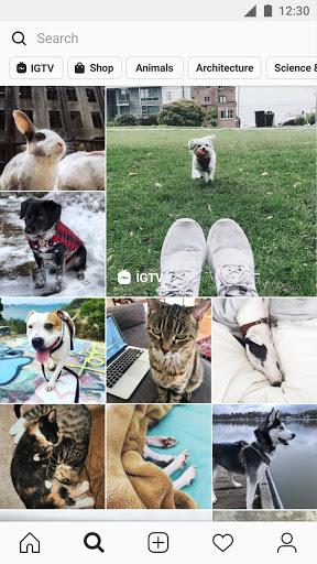 Instagram - Ảnh chụp màn hình 3