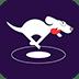 DOG VPN